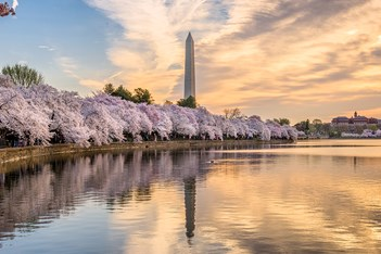 5 Meetings Options in Washington, D.C.