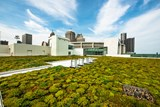 cobo-convention-center-green-roof-sustainability